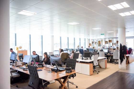 An open office with people working at desks on computers