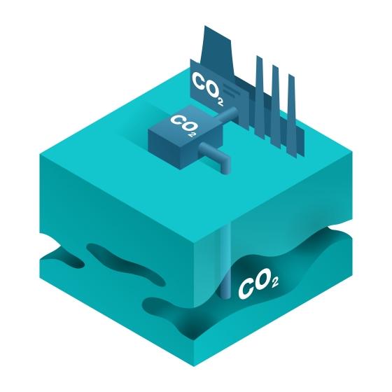 Carbon sequestration diagram