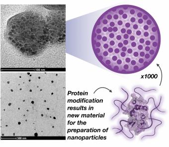protein-nanoparticles.jpg