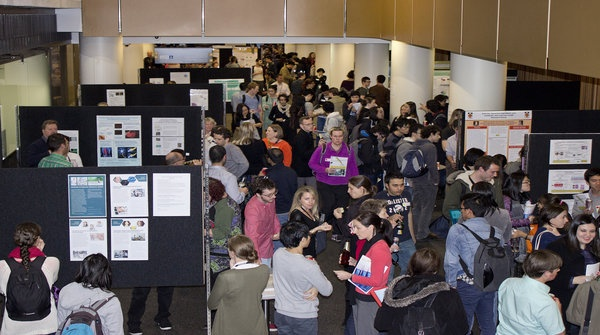 School of Medical Sciences research information night