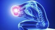 Brain Sciences UNSW Colloquium  image